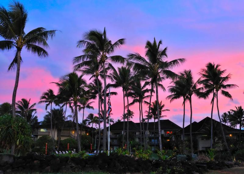 Sunrise - View says it all! Top floor(3rd) vistas of Pacific. Beachfront, great for kids - Kapaa - rentals
