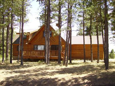 View of the front - mountain vacation home - Angel Fire - rentals