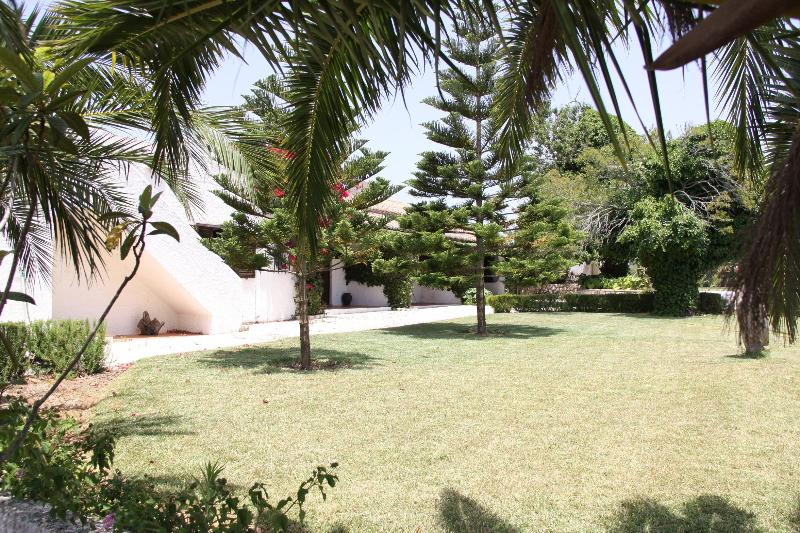 Garden - Charming apartment in a villa with garden - Burgau - Lagos - rentals