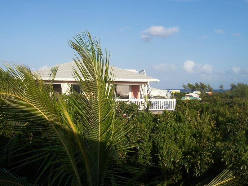 L'il Gecko Cottage - small and sweet! - Affordable, Adorable & Convenient - 1 Br  w/ views - Abaco - rentals