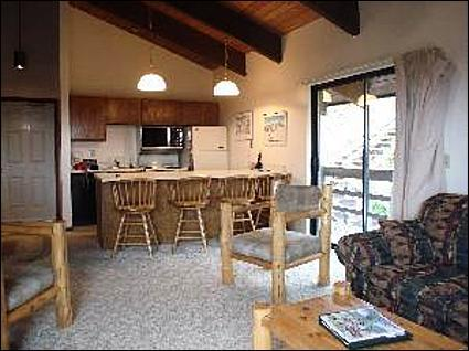 Living Room with High Vaulted Ceilings - Great Mountain Views - 5 Minutes from the Slopes (1025) - Crested Butte - rentals