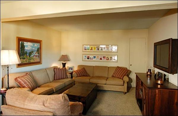 Living Room (Representative Unit) - Comfortable Mountain Condo - Beautiful West-Facing Views (1141) - Crested Butte - rentals