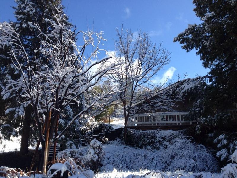 Front of home after a snow storm - Fishermens Oasis,HOT TUB, wifi, close to Yosemite! - Oakhurst - rentals
