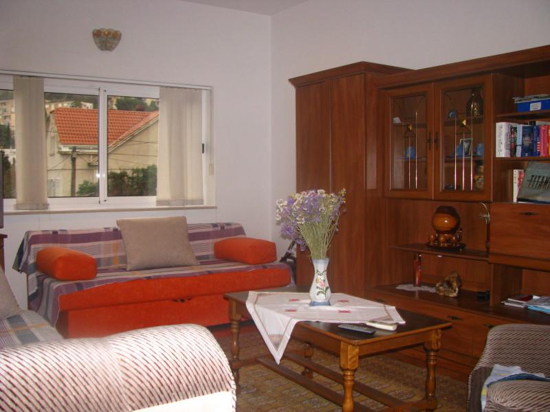 Living room - excellent value for money,1 free private parking - Dubrovnik - rentals