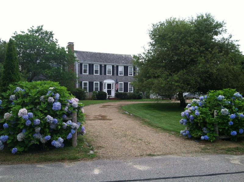 Circular Drive in Front Yard - Classic Edgartown Home - Edgartown - rentals