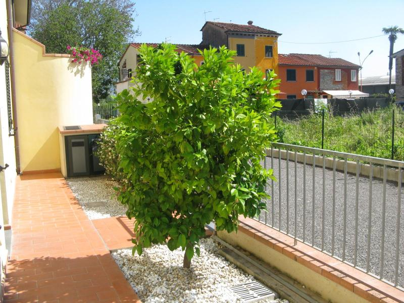 The front garden with the grapefruit tree - Casa di Laura Lucca - Near the Center, Includes a Garden - Lucca - rentals