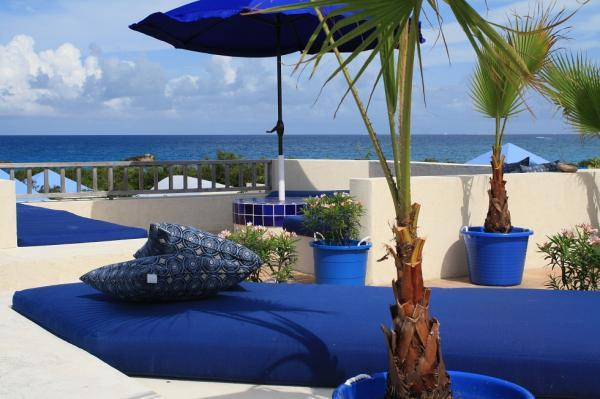- Indigo Reef - Palm - Anguilla - rentals