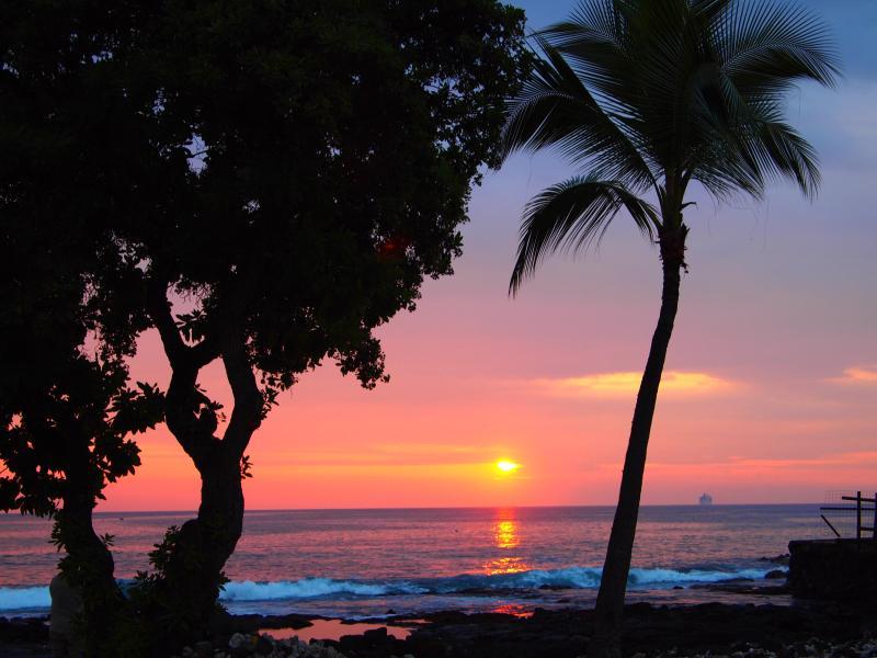 Downtown Kona! - Dolphins/Whales from Lanai 1 bd + loft Ocean View - Kailua-Kona - rentals