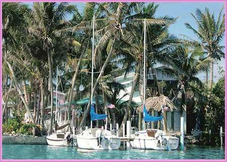 Conch Key TreeTop one BR Cottage with 23' Sailboat - Image 1 - Conch Key - rentals