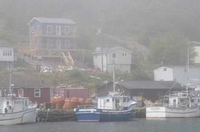The Nests through sun and fog! - ShoreLark by the Sea 1 BR Nests / 2 BR Guest House - Petty Harbour - rentals