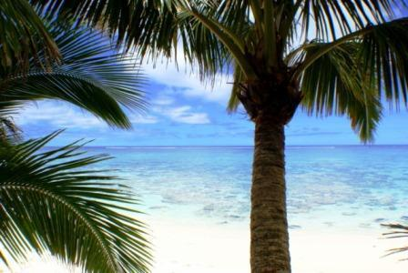 Magic! - ANNS BEACH HOME Right on the Best Rarotonga Beach - Rarotonga - rentals