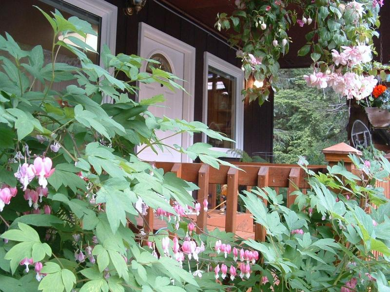 Summer front entrance - Girdwood Guest House suite 2 bedrooms from $130 US - Girdwood - rentals