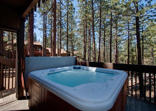 Private Lake Tahoe vacation rental in Lake Village (LV58) - Image 1 - Stateline - rentals