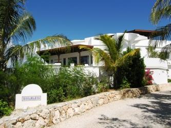 Rosamaris Villa at Callaloo Club, Anguilla - Beachfront, Gated Community, Pool - Image 1 - Anguilla - rentals