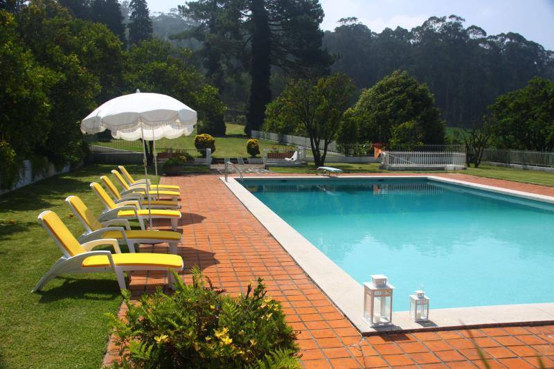 Swimming Pool - 8m x 18m - Casa D'Quinta: pool, tennis court, gardens - Vila do Conde - rentals