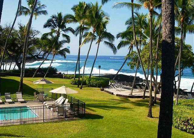 Amazing Oceanfront Kona Isle D21 $90.00 special May 14th-21st! - Image 1 - Kailua-Kona - rentals