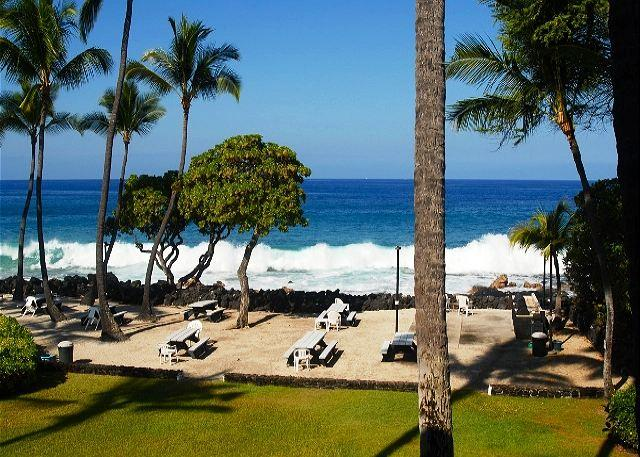 Your amazing view from your lanai!!  - Amazing Oceanfront Kona Isle D21 - Kailua-Kona - rentals