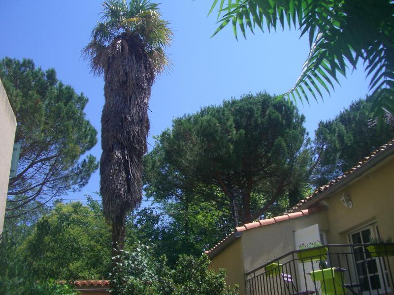 """Sky veiw - Le Petit Jardin Residence """"Lavender"""" Apartment - Limoux - rentals"""
