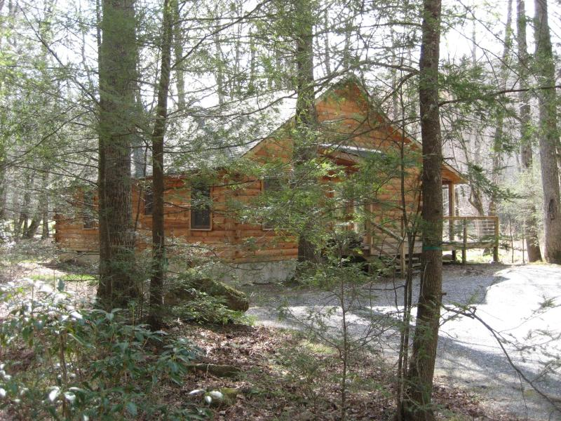 Enter Our World in the Woods! - Peaceful Log Cabin 8 ft from Creek Open Year Round - Burnsville - rentals