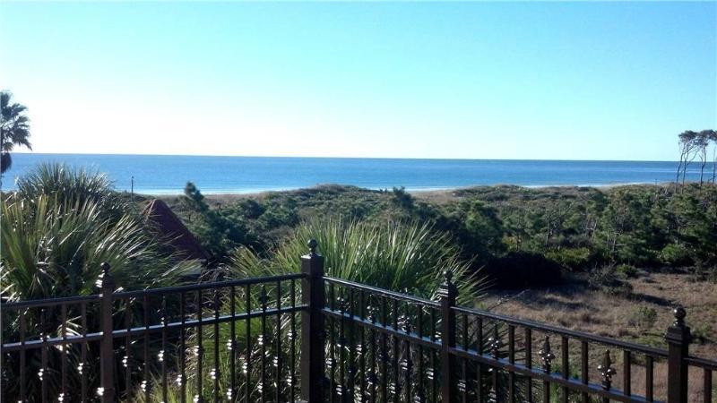 SEA LA VIE - Image 1 - Saint George Island - rentals