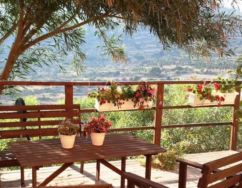 Private Yard - lovely studio in Pastoral Bet Zayit near Jerusalem - Jerusalem - rentals