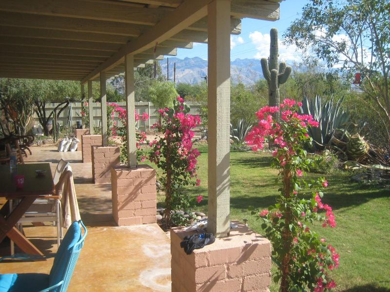 View on the porch - Tucson Central Villa w/ Garden, Guest House & Pool - Tucson - rentals