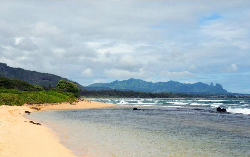 Beach in front of resort - Kauai Ocean Escape *** Affordable Luxury! - Lihue - rentals