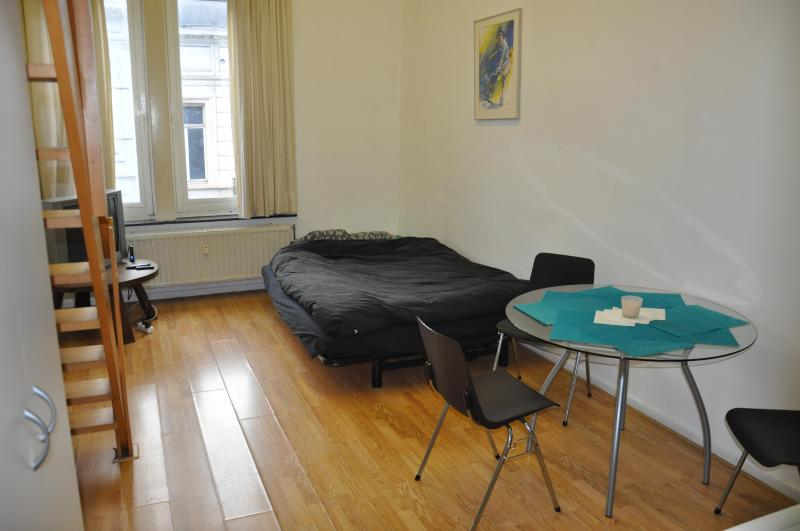 Grand apartment central brussels - Image 1 - Brussels - rentals
