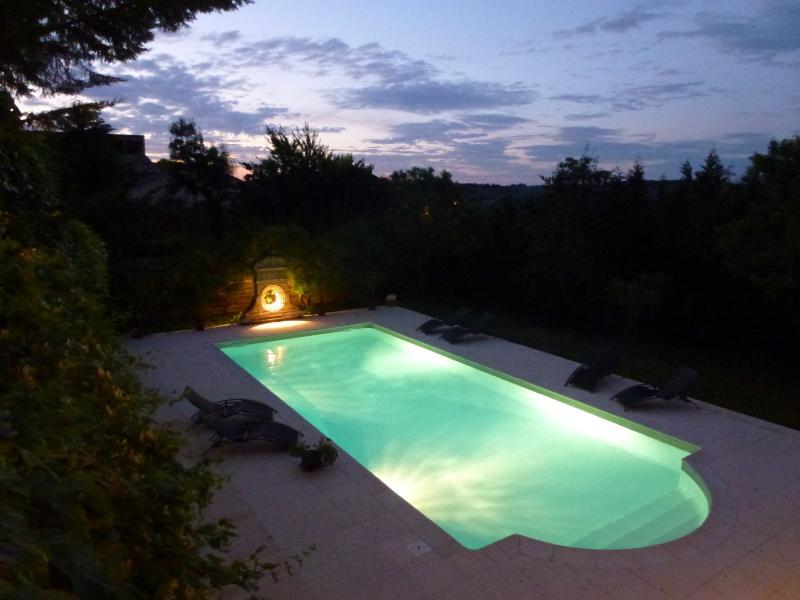 Fancy a midnight swim ? - No car needed+concierge. manor house in village - Beaumont-du-Perigord - rentals