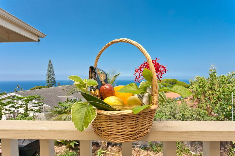 Wild women of the Sea private studio - Image 1 - Kailua-Kona - rentals