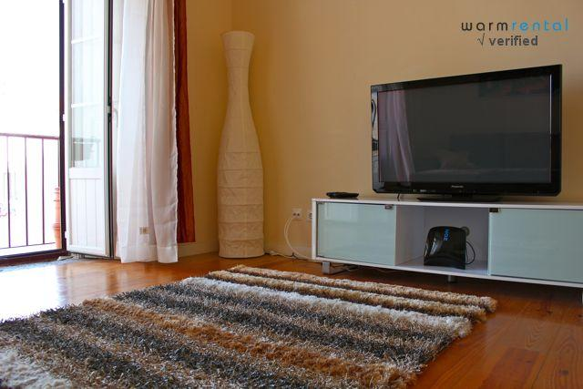 Living Room  - Orris Root Apartment - Lisbon - rentals