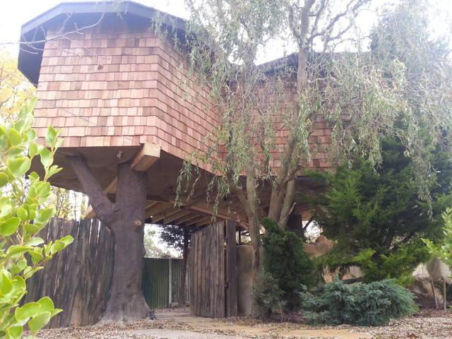 Treehouse Hideaway- Hot tub & Log burner - Image 1 - Canterbury - rentals