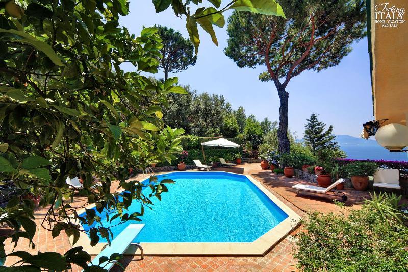 The central terrace, with swimming pool. - Villa Pisani - Massa Lubrense - rentals
