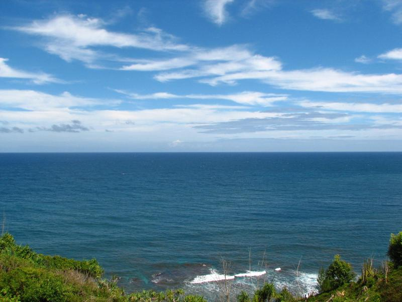 Spectacular unobstructed ocean view from lanai (front row seat to whale watch!) - Oceanfront Condo - Spectacular Views - Low Rates!! - Princeville - rentals