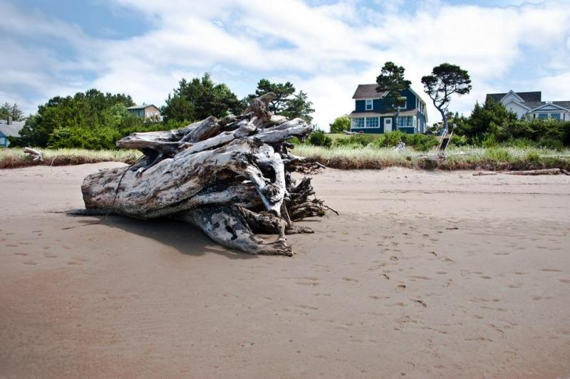 View of the home from the beach - historic waterfront beach house in seaside, oregon - Seaside - rentals