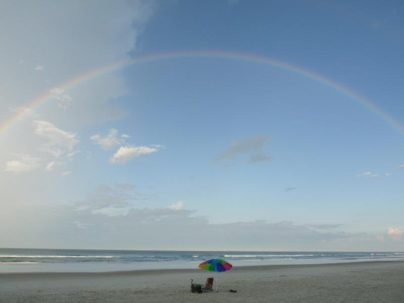 No Drive (Vehicle Free) Condo Beach - Spectacular Direct Oceanfront Balcony-Dog Friendly - Daytona Beach - rentals