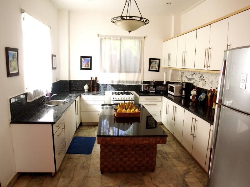 large Chefs Kitchen for entertaining - SKY VILLA BORACAY - Boracay - rentals