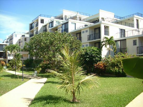Coral Beach Condo's - Coral Beach Studio ON THE BEACH! $105 per night - Freeport - rentals