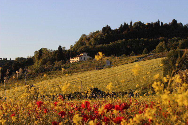 Casa per vacanze tra le colline del chianti - Image 1 - San Casciano in Val di Pesa - rentals