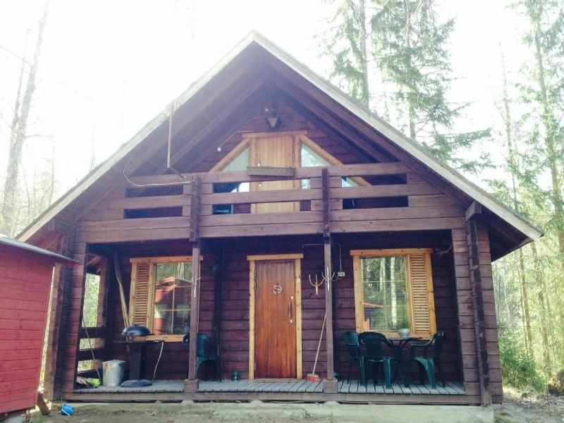 Front of the house. - TRADITIONAL FINNISH LOG CABIN - Kuru - rentals