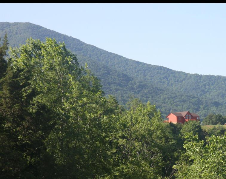 Cabin from Valley Burg Road - Great for large families -- 3600 sf and 5 Bedrooms - Luray - rentals