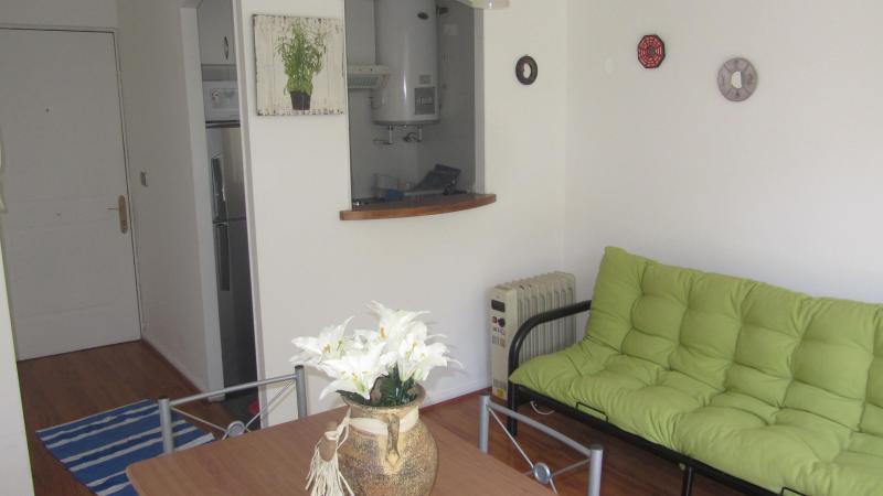 living room - Nice Neighbourhood appartment (flat) in Santiago - Puyuhuapi - rentals