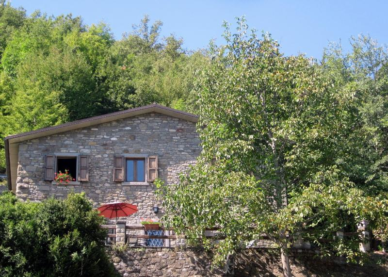 Casa Cappellino - Your Home in Tuscany - Casa Cappellino - Your Tuscan Vacation Home - Caprese Michelangelo - rentals