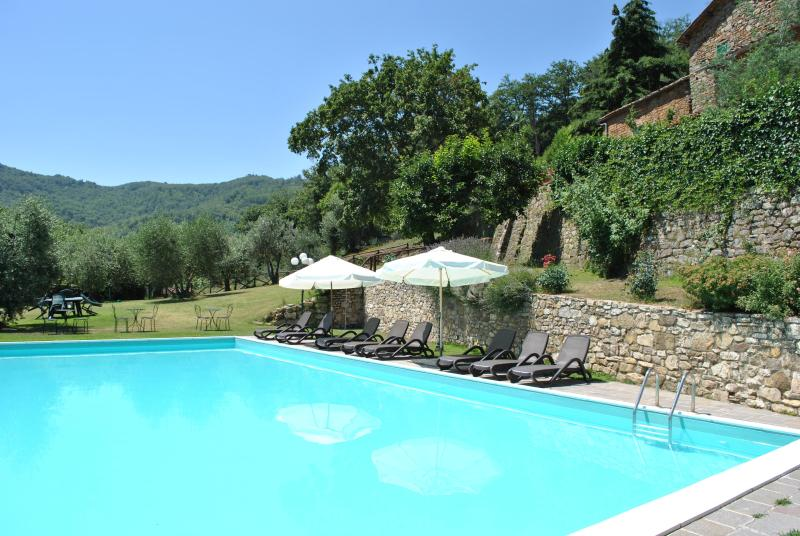 Villa il Castellaccio in Greve in Chianti Flat #2 - Image 1 - Greve in Chianti - rentals