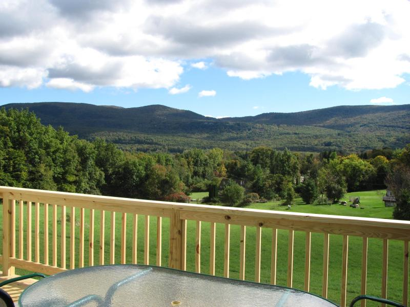 The view from the spacious deck ! - Private, new  3 bedroom, 3.5 baths on 3.8 acre - Manchester - rentals