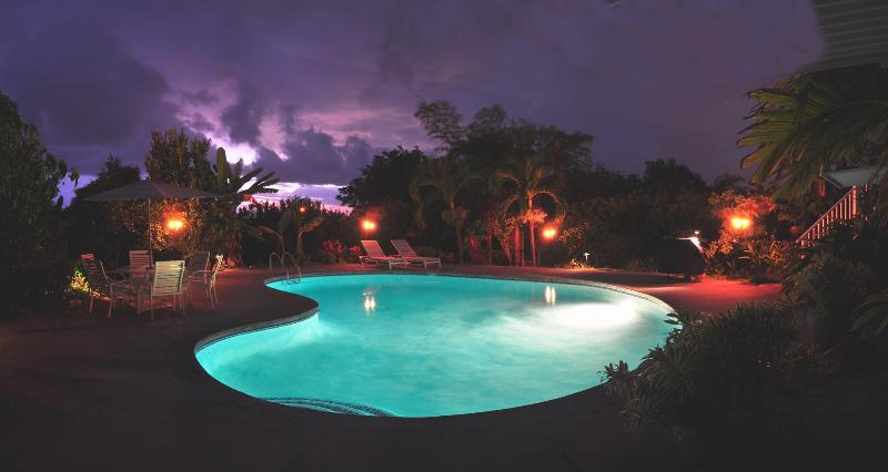 A Visit during the Full Moon! - The Kona Retreat - Kailua-Kona - rentals