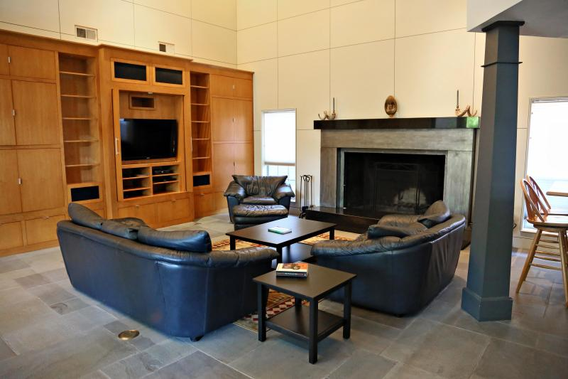 Spacious living room with two story ceilings and grand fireplace - 5 star Central Austin 4 BR/3.5 BA  home, licensed - Austin - rentals