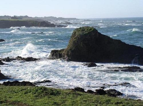 Pine Beach House & a path to the beach - Mendocino - Image 1 - Mendocino - rentals