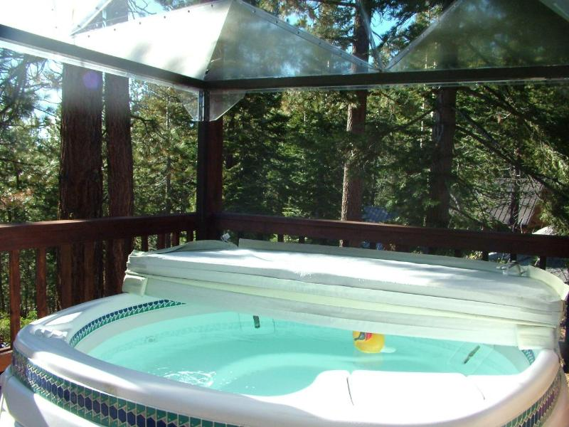 Relax under the stars in the spa - Heart's Nest Cabin near Bear Valley, CA - Bear Valley - rentals