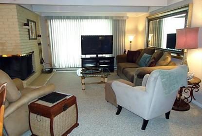 Living area - 1 Bedroom/1 Bath Condo at Chateau Blanc- Unit 5 - Aspen - rentals
